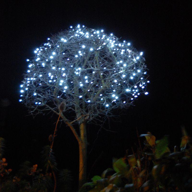Tree&lights